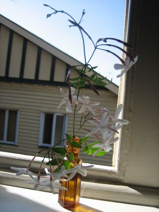 Photos sept 2008 053