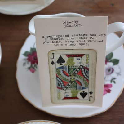 Tea-cup planter seed packets - 1