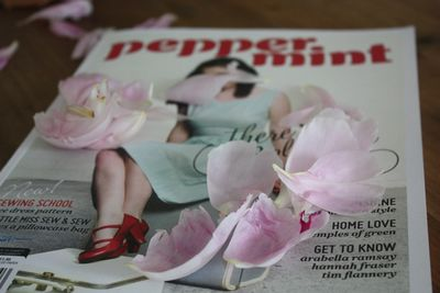 Perpetualone peppermint mag - 1
