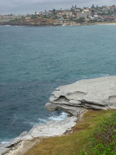 Bondi to bronte walk - 4