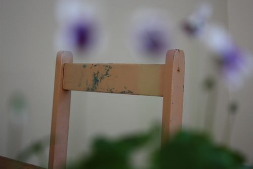 Violets & MoMA - 6