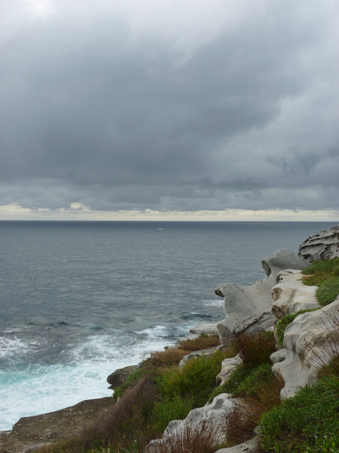 Bondi to bronte walk - 3