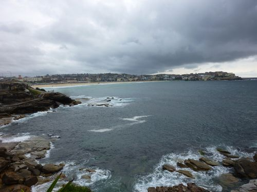 Bondi to bronte walk - 8