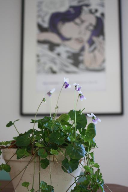 Violets & MoMA - 5