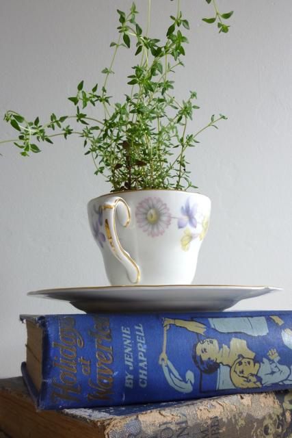Tea cup planters - 1